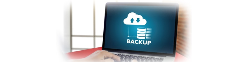 Automatic Daily Backups