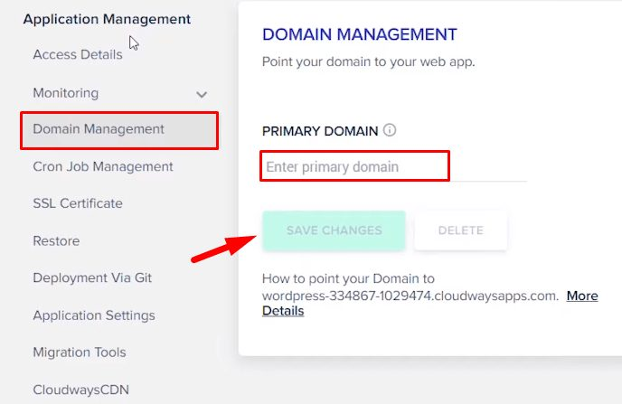 Domain Management section in Cloudways