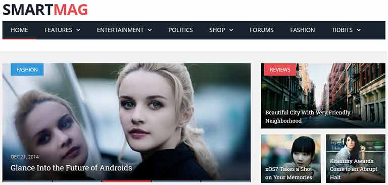 smartmag themes