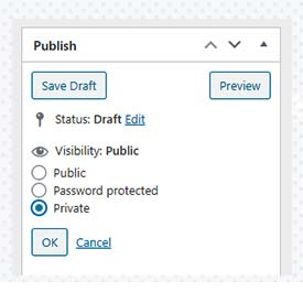 Private security Interface