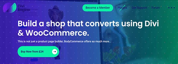 best divi plugins, divi body ecommerce